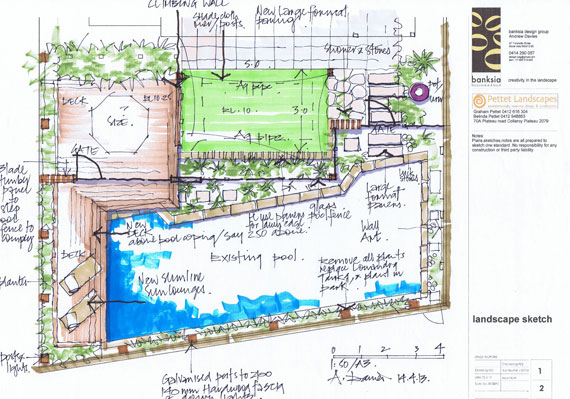 Northern Beaches garden design Pettet Landscapes